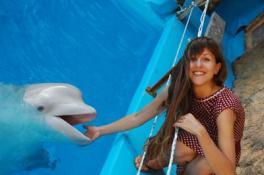Дельфины – те, что дарят счастье